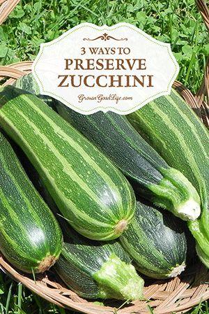 3 Ways to Preserve Zucchini | Grow a Good Life