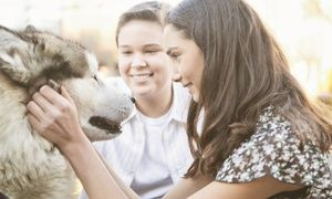 Groupon - $ 19 for an Accredited Online Animal-Psychology Course from Holly and Hugo ($175 Value)  in [missing {{location}} value]. Groupon deal price: $19