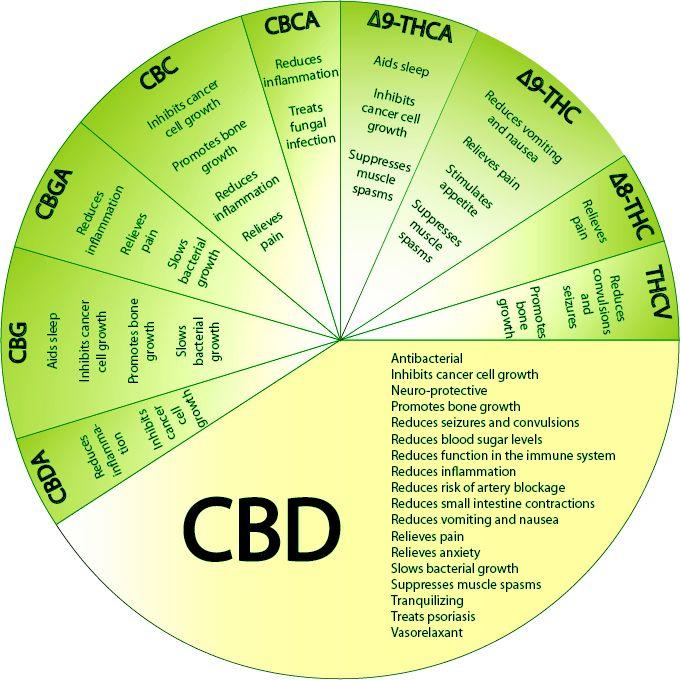 Cannabis has the following.....