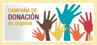 Junio 6th: Día Nacional del Donante de Órganos y tejidos (1º miércoles) [Spain National Organs and tissues donor Day] Go to http://healthaware.org/category/2012/18-june-2012/ for link to more information.*