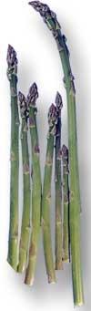 asparges/parsa oppskrifter