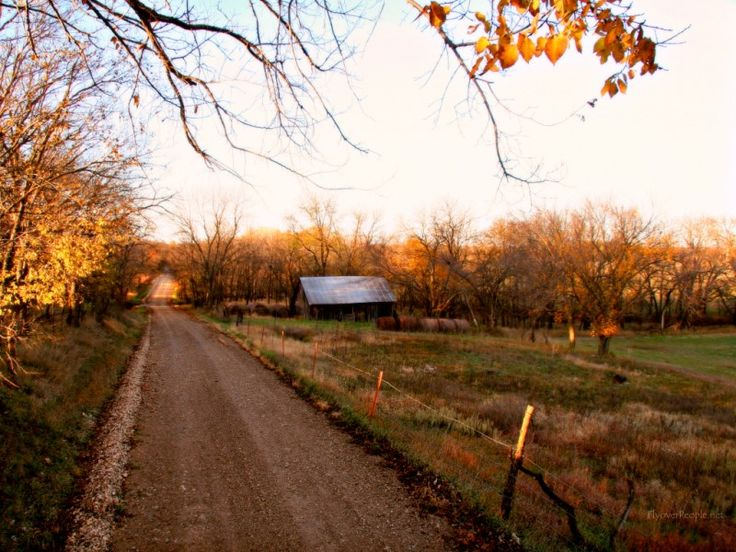 Fall Wallpaper Road Country Background Images Right Click On The Image And