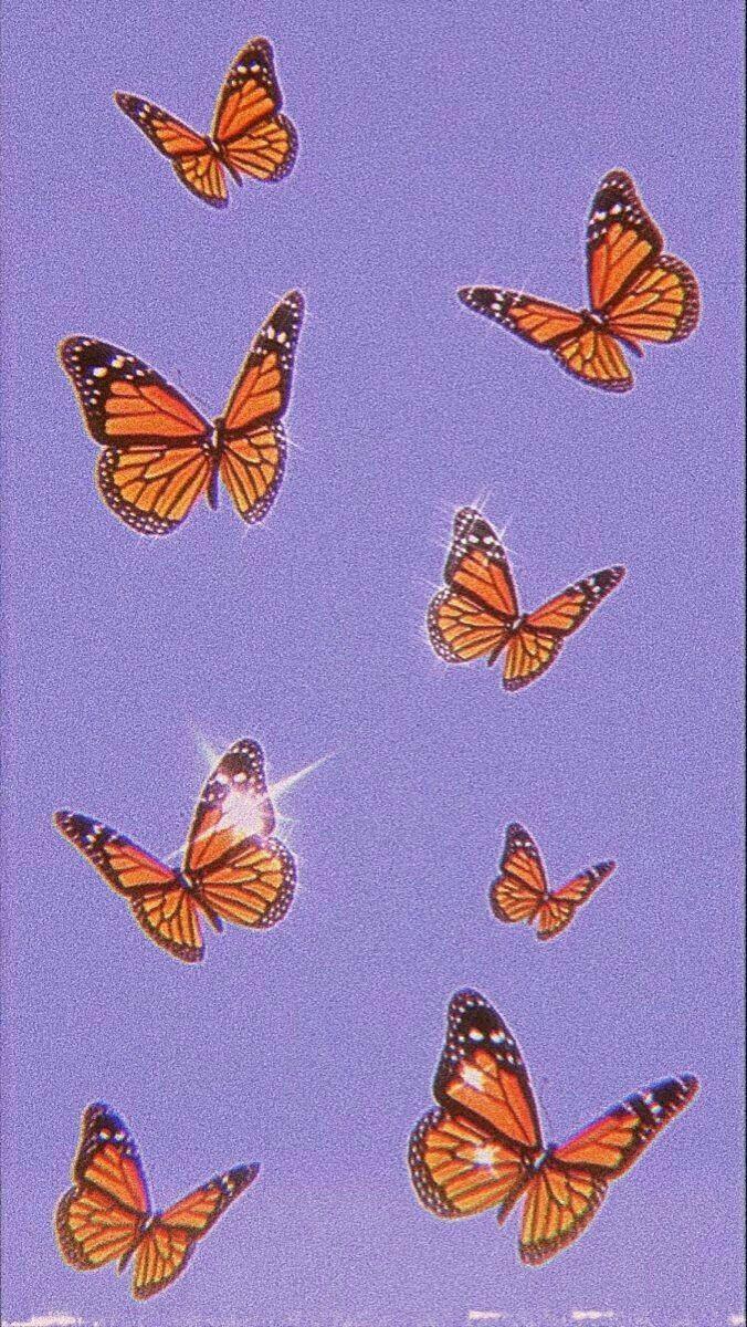 Wallpaper de mariposas in 2020   Aesthetic wallpapers ...