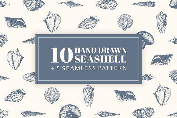 10 Hand Drawn Seashell + 5 Patterns by Storyteller Imagery on @creativemarket