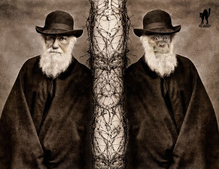 Whether you agree with Charles Darwin's theory of evolution, I think we can all agree that the man knew a thing or two about beards and women.