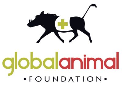 Global Animal Foundation--- HUGE list of companies that don't test on animals, list of catalogs and online stores to shop for CF products, & CF pet food suppliers!!