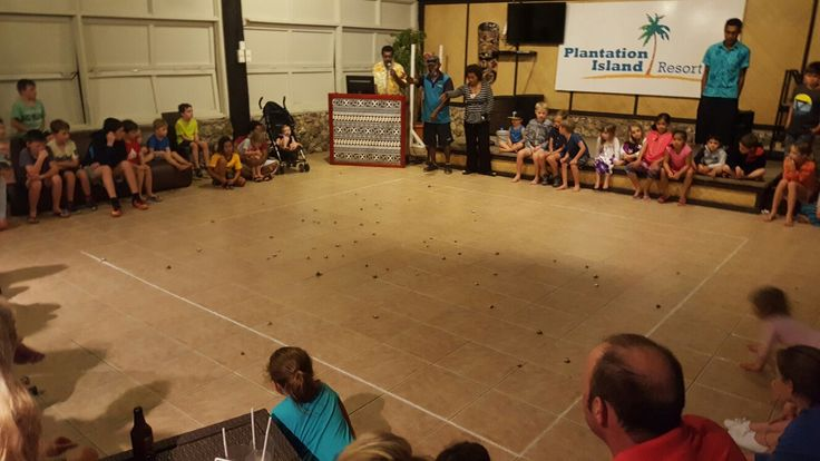 Watch A Hermit Crab Race