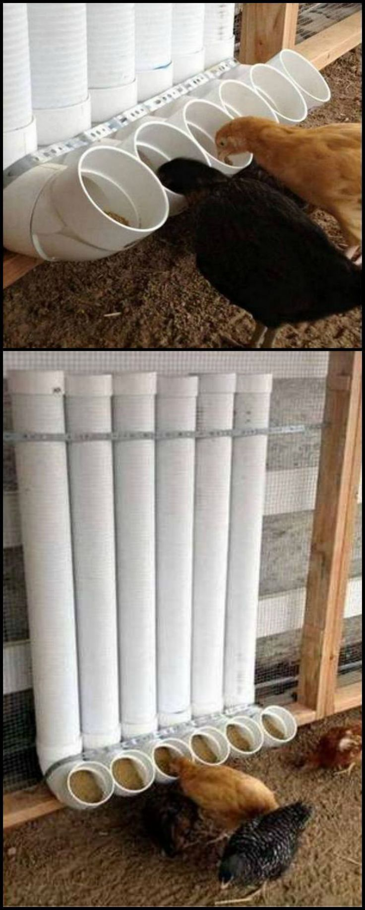 DIY PVC pipe chicken feeder that's easy to fill, hard to spill, weather resistant, easy to make, and inexpensive!