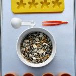 Fine Motor and Sorting~Seed Tray