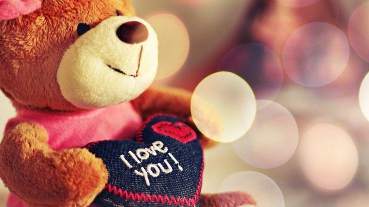 amor, oso de peluche wallpaper
