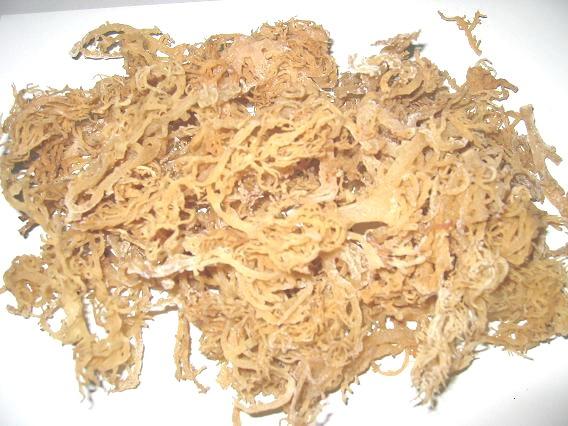 Irish Moss Paste aka Sea Moss