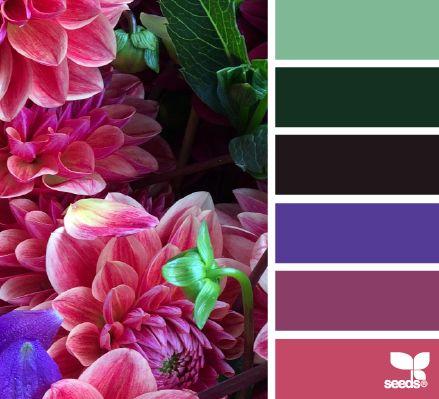 Flora Palette - http://design-seeds.com/index.php/home/entry/flora-palette22