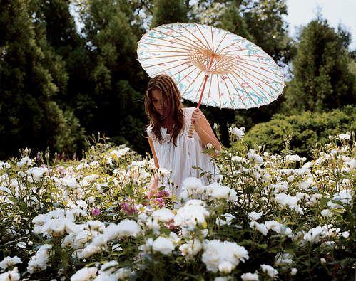jardins du roi versailles potager printemps 2017 esprit jardin