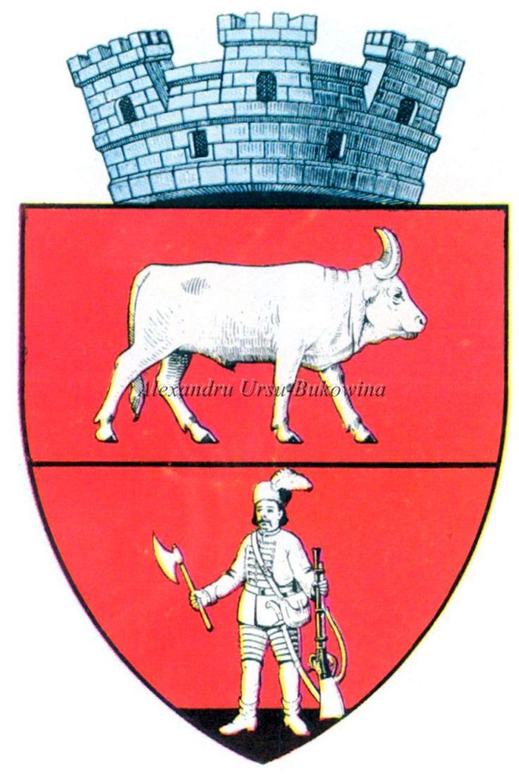 Ținutul Suceava. Județul Dorohoi. Darabani.