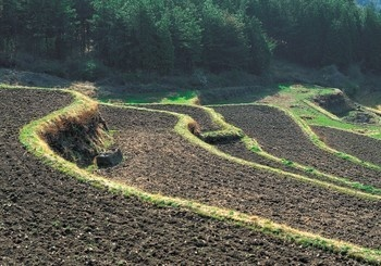 10 Ways to Conserve Soil. I bet you can find a couple methods to start using on your land to help keep soil where it belongs.