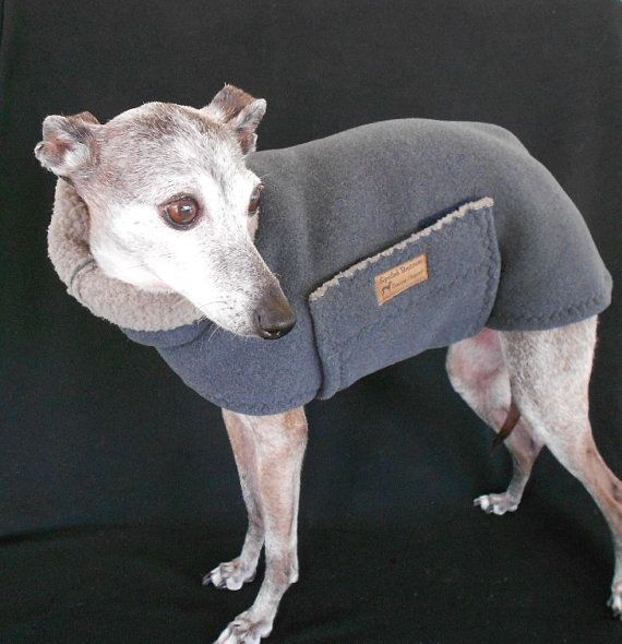 Warm Shearling Fleece Wrap Coat with Snood for Italian greyhounds Etsy. My friend Holly makes the MOST amazing iggy clothing.