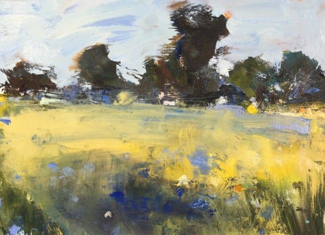 Hannah Woodman - Cornflowers, Cornish Fields