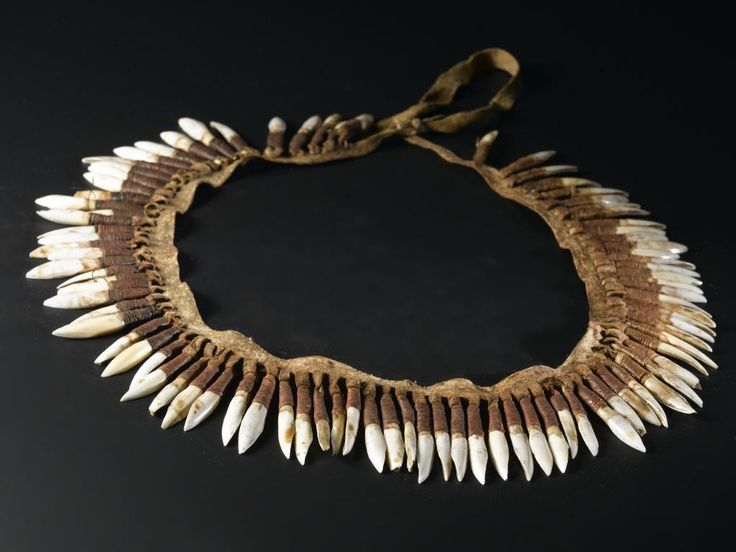 Kangaroo incisor ornament of eighty eight kangaroo teeth suspended from a strip of dressed kangaroo skin by loops: Oceania, Australia, Victoria, Australian Aboriginal, 1850 - 1860 © National Museums Scotland