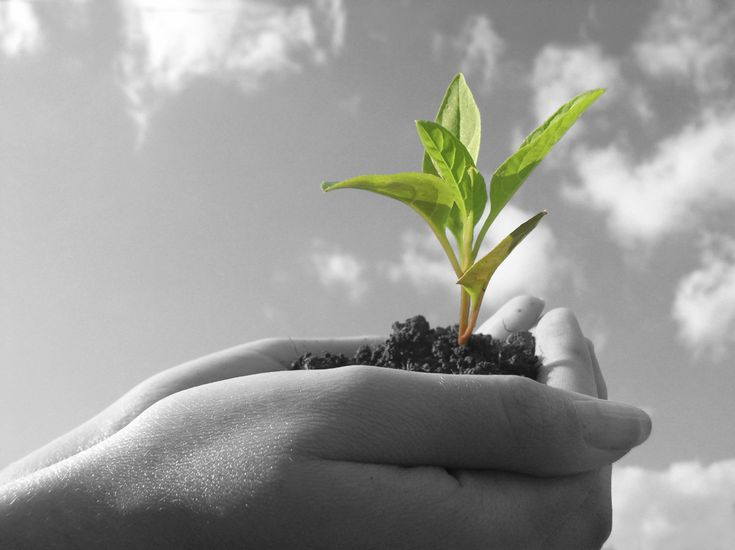 Is Your Business Growing?