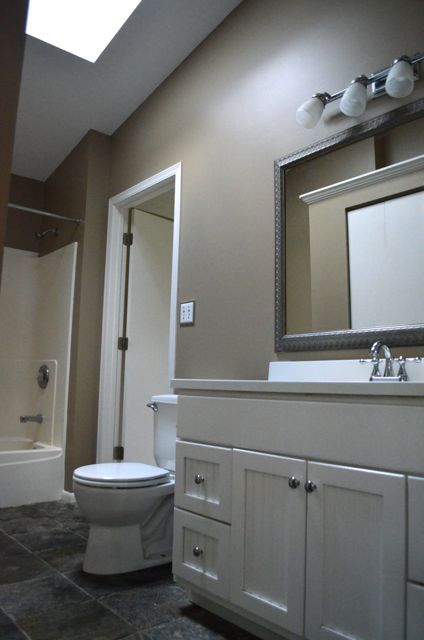 Sherwin Williams Studio Taupe Washbasin Design
