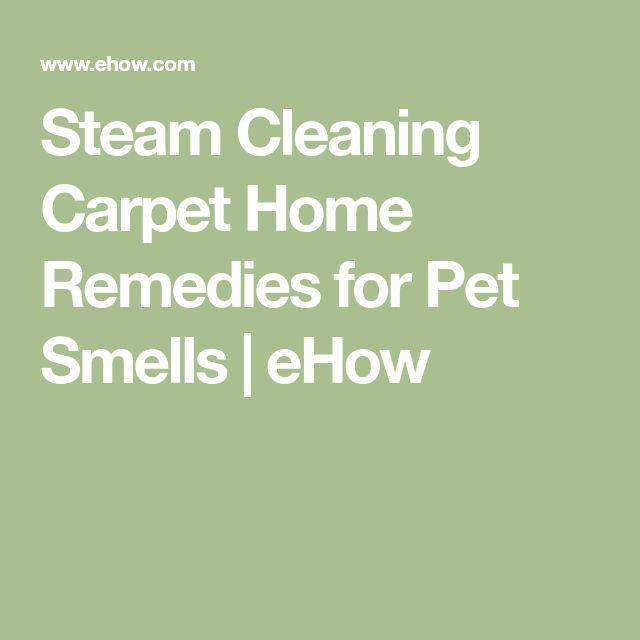 Steam Cleaning Carpet Home Remedies for Pet Smells | eHow