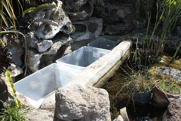 78 images about pond bog filter ideas and designs on for Plastic water garden pond