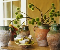Olive Jar Arrangement with chestnut branches