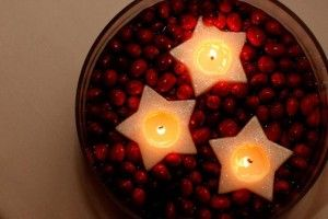 30 best images about crafts on pinterest christmas for Artificial cranberries decoration