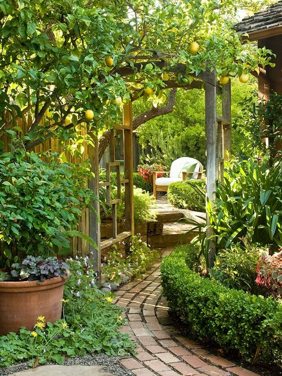 a brick path completely SURROUNDED by gardens and trees #HamiltonsHomeAndGarden