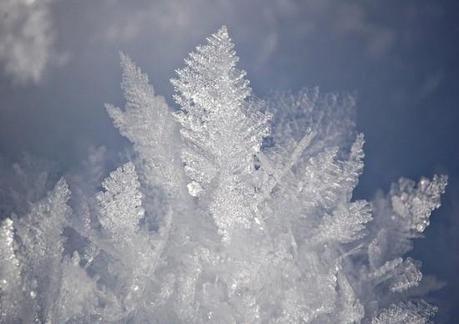lartistica-geometria-dei-cristalli-di-neve-di-l-g9xk5l