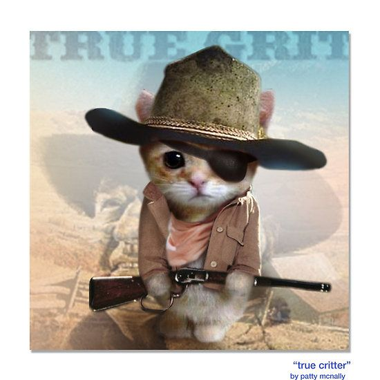 1000+ images about Cats/Cowboy/Cowgirl on Pinterest | Cat ...
