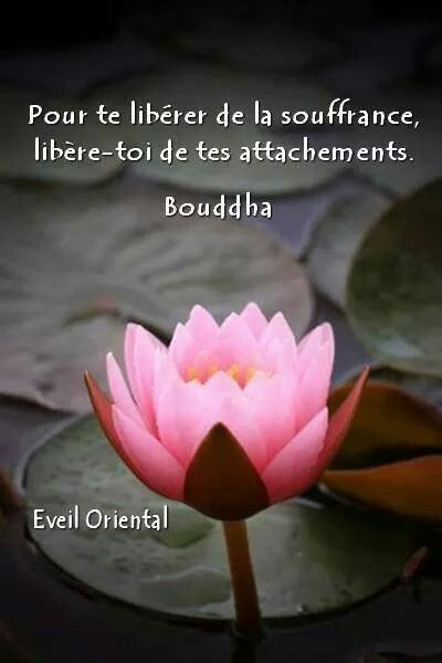 Très 185 best Yoga, Shiatsu Zen Attitude images on Pinterest | Buddha  OV16