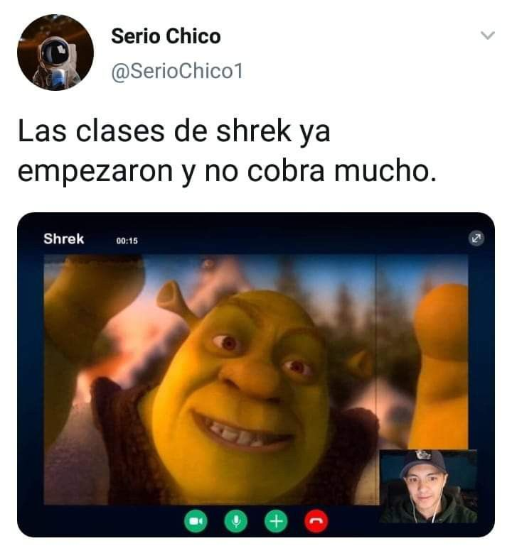 Clases De Shrek Memes Estupidos Memes Comicos Memes Graciosos