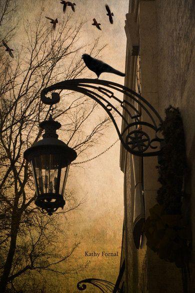 Surreal Night Photography - Fantasy Street Lamps Raven, Gothic Street Lantern Ravens, Haunting Spooky Photograph 8 x 12 via Etsy