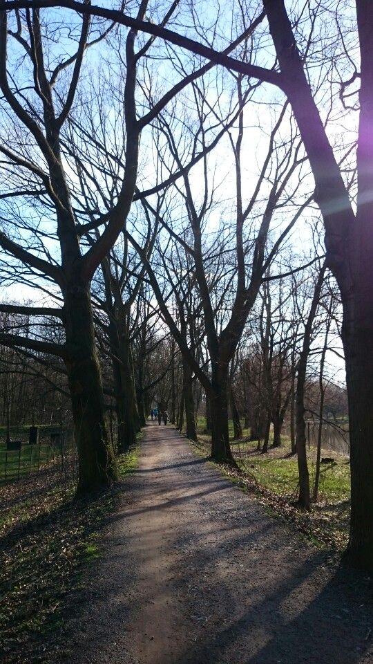 cesta kolem flošny