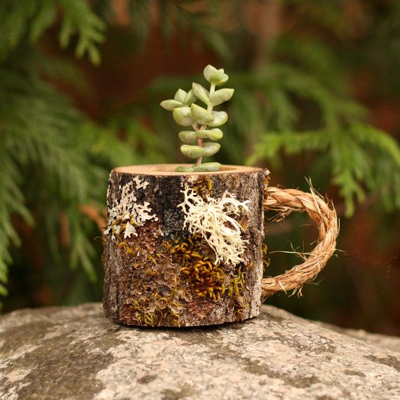 Mug Succulent Pot Christmas Gifts for Her by WoodlandFever on Etsy