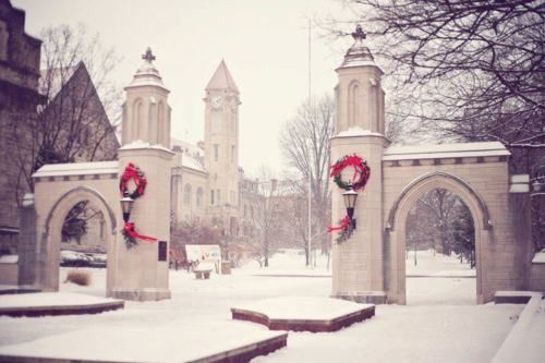 Indiana University Sample Gates. This would make a great print for Christmas decor.