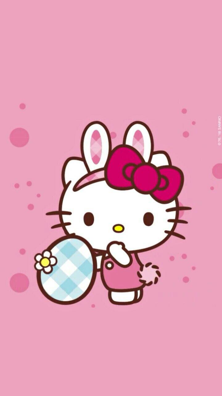 Hello Kitty Hello Kitty Kitty Hello Kitty Pictures