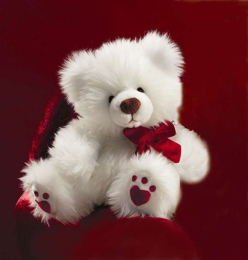 Valentine bear. I would love to get this for Valentine's Day from my love.