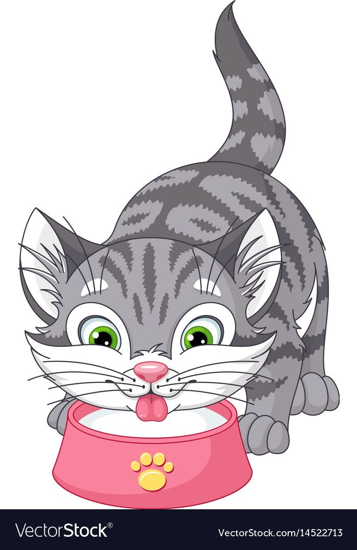 Kitten Drinks Milk Vector Image On Vectorstock Cartoon Drawings Of Animals Cat Drawing Animated Animals