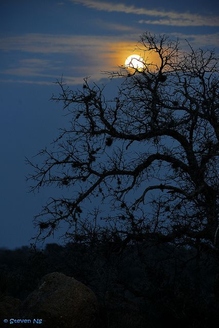 Moonrise over Enchanted Rock State Park, Texas