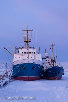 Boats frozen in at Kirkenes,arctic part of Norway ☮k☮ #Norge