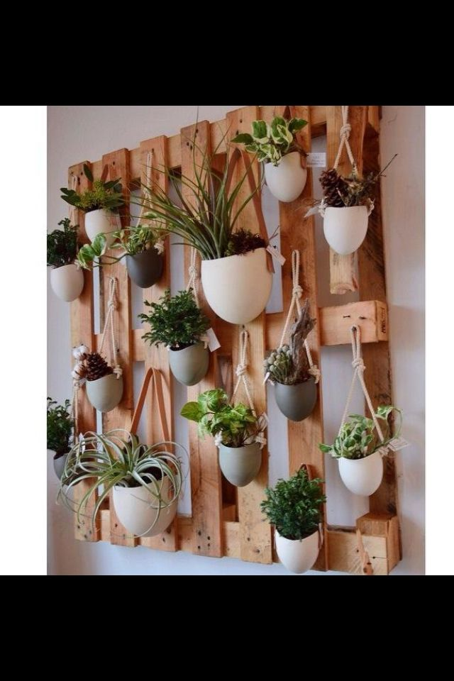 Planter wall. Could do with herbs outside kitchen? Instead of pallet just use wo…