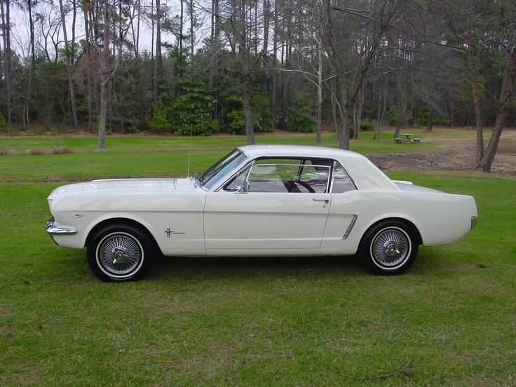 1964 MUSTANG 389 WHITE | Antique Cars, Classic Cars Collector, Cars for sale and Trucks for ...