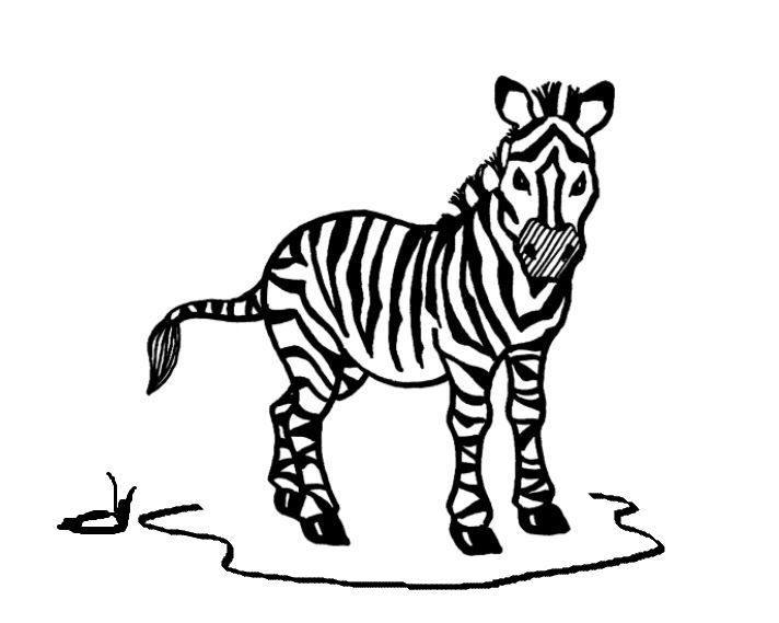 Zebra Coloring Page Zebra Coloring Pages Coloring Pages Zebra