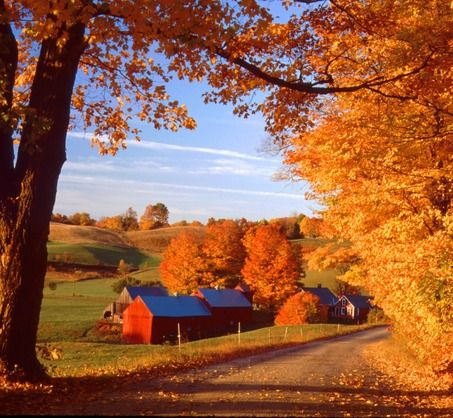 Fall in New England: Country Roads, Autumn Leaves, Autumn Scenery, New England Fall, The Farms, Autumn Photo, Roads Trips, Fall Photo, Fall Seasons