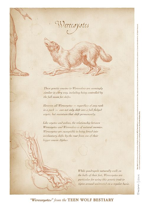 """""""Werecoyotes"""" page from the Teen Wolf Bestiary by Swann Smith. Art prints starting at US$20."""