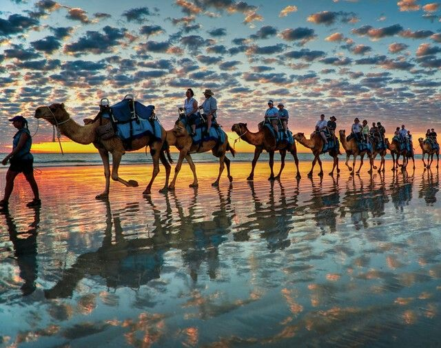 Camel Safaris at Cable Beach, Australia