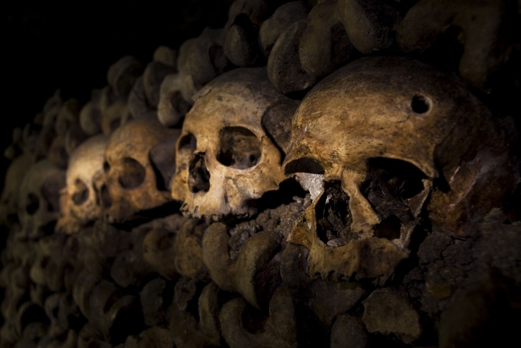 Catacombs in Paris: Paris Consistency, Favorite Places, Catacombs De, Glasses, Paris, Buonomo Photography, Places I D, Christy Buonomo, Pur Check