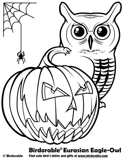1000 images about birdorable coloring pages on pinterest
